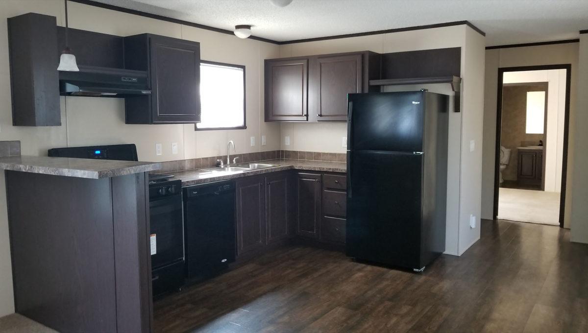 Sunny New Kitchen
